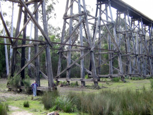 The Stony Creek Trestle Bridge towers over a person