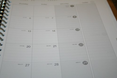 I have a duo-style calendar with lots of room to write in a calendar at-a-glance section.
