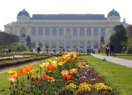 Jardin des Plantes today