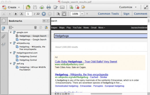 Figure 4: PDF File with Additional Pages Appended to It (See the Bookmark List at the Left of the Picture)