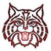 AZWildcats profile image