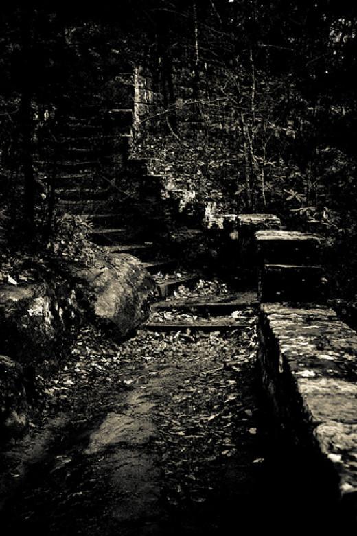 Dark Path from Jesse King flickr.com