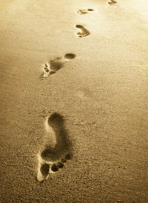Do not go where the path may lead, go instead where there is no path and leave a trail.  ~~~ Ralph Waldo Emerson