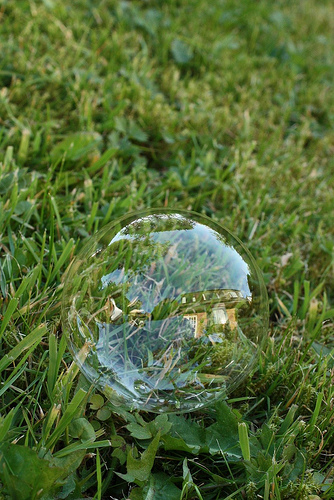 Living In A Bubble from Helen flickr.com