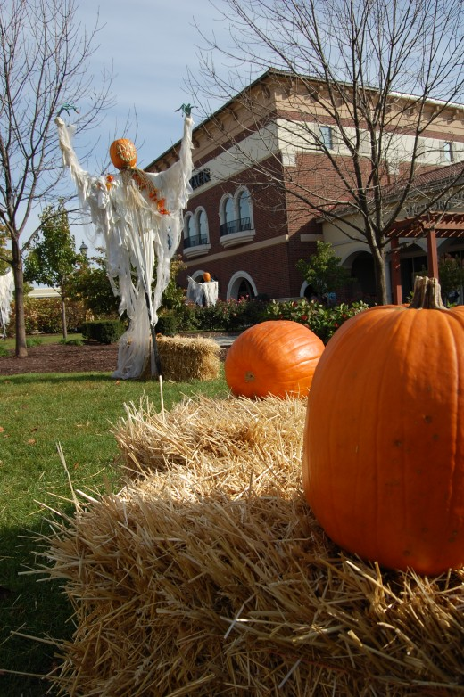 Jefferson Point Shopping Center Fort Wayne, Indiana. Fall Deco: Pumpkins, hay and spooky scarecrow