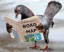(Updated) WWII Pigeon Found in Chimney.
