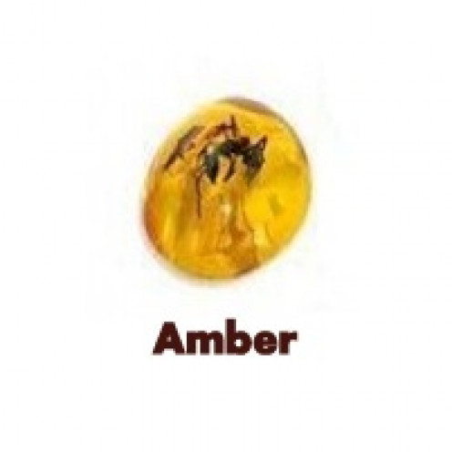 Amber is an Organic Gemstone.