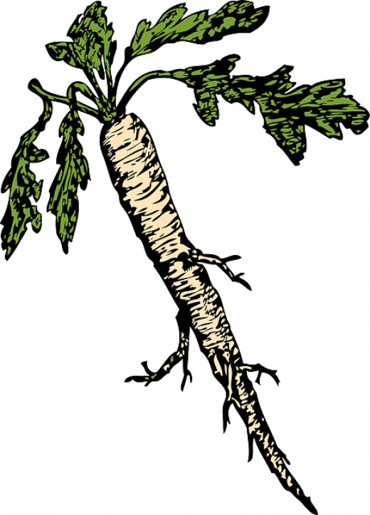 Horseradish gives this dish some zing.