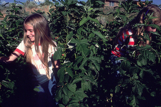 Children love gardening as well