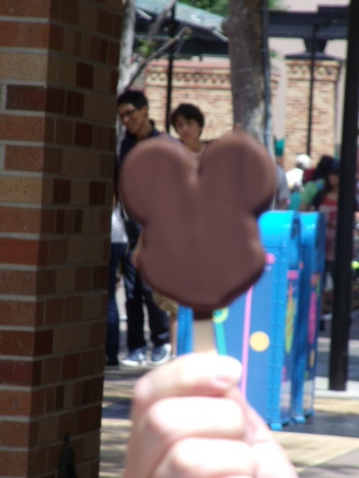 No trip to Walt Disney World is complete without a Mickey Ice Cream