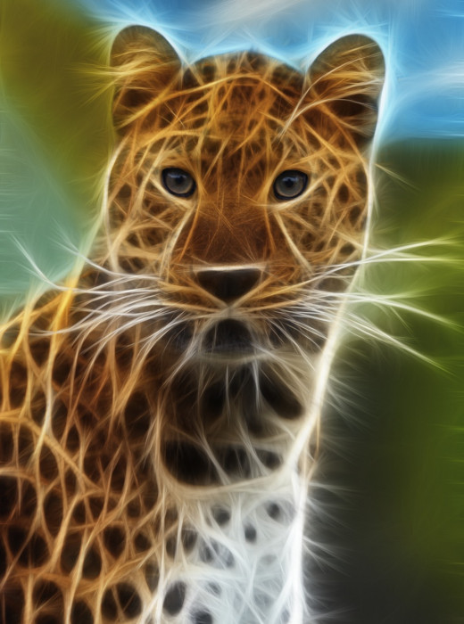A fractalius leopard created using a plugin from Redfield.