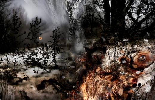 Les filtres de la perception from Marine Lupercale flickr.com