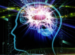 10 Foods that Help Boost Brain Power