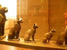 Various statues of cats at the Louvre Museum, representing Bastet.