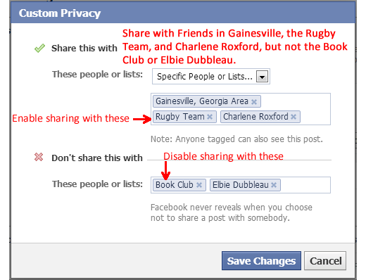Filled in Example of Facebook Custom Privacy Dialog Box