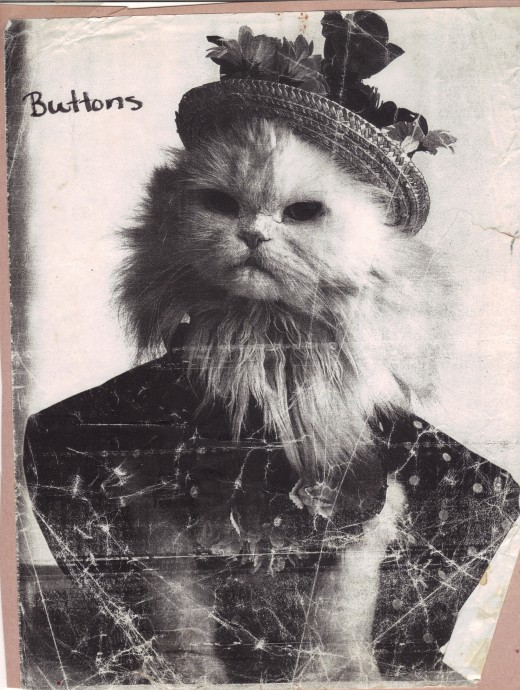 Buttons is a fun picture I found out of a magazine that has inspired several imaginative stories!