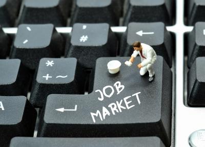 The Job Market Complexity