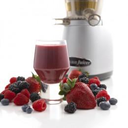 Omega VRT350HD Juicing Berries