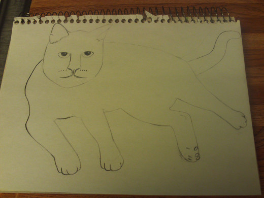Start by sketching out the form of the cat.