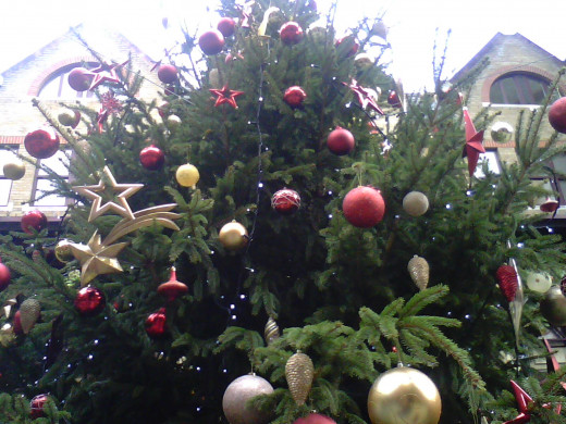 Here's a pic of a Christmas Tree that's put up in Kensington in London outdoors.