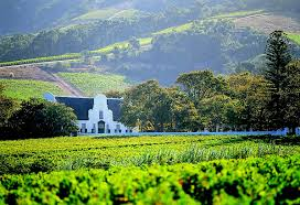 Constantia Estate, Cape Town