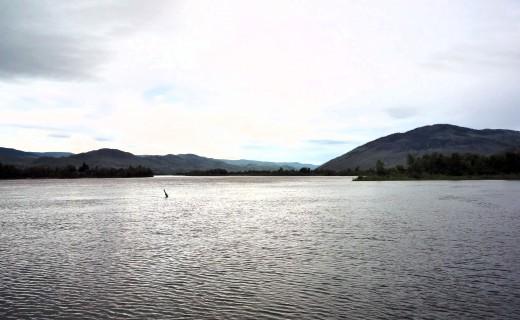 Thompson River, Kamloops