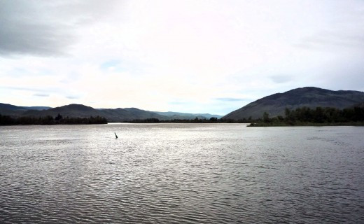 Thompson River, Kamloops