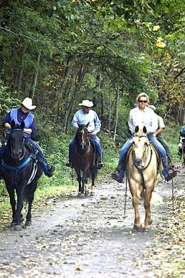 Enjoying a ride on horseback through the park.