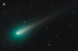 Comet Ison imaged, and showing the bright head, the fuzzy coma or atmosphere around the head, and the beginnings of its tail. Note also the greenish colour