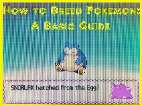 How to Breed Pokémon in the Pokémon Games