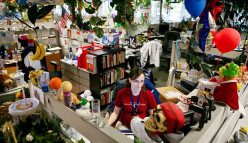 Zappos, Trader Joe's and Austin Bizmart Review: The Value of Honesty in Small Businesses Online