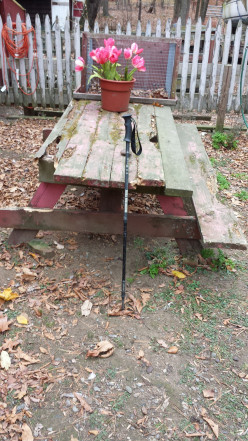 The many uses of walking sticks