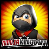 Ninja Kingdom(Dojo Mojo)