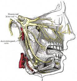 Trigeminal neuralgia - A Personal Story