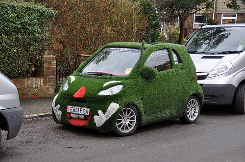 A lovely carpet covered Smart Car.