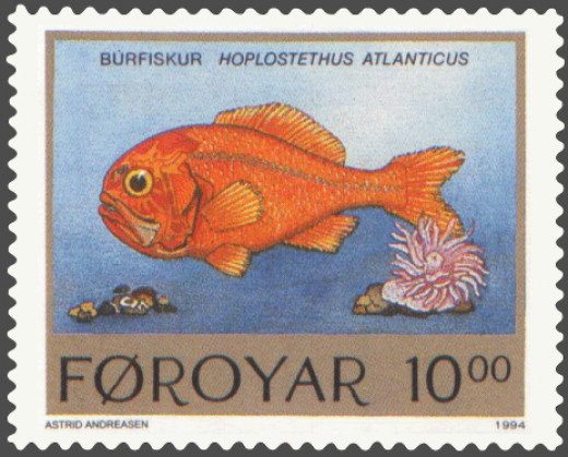 Actually, the fish is orange only after death. Living, it is brick red..