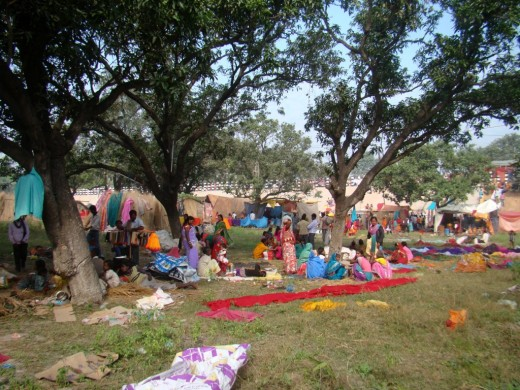 People resting in a mango grove in the fair ground