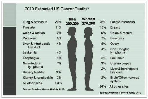 American Cancer Society, 2010 U.S. Estimated Cancer Deaths in Percentages