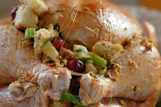 File: Stuff Turkey.jpg Author: Brian Teutsch CC-BY-2.0