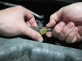 How to Change Spark Plugs on 2005 Toyota Corolla and Save Your Money and Time