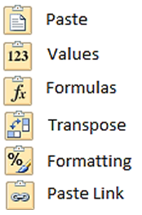 The six buttons available when selecting paste in Excel 2010.