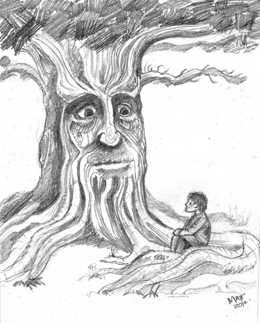 """Wise Old Tree"""