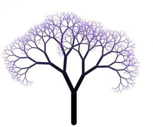 The branching of trees is a fractal pattern.