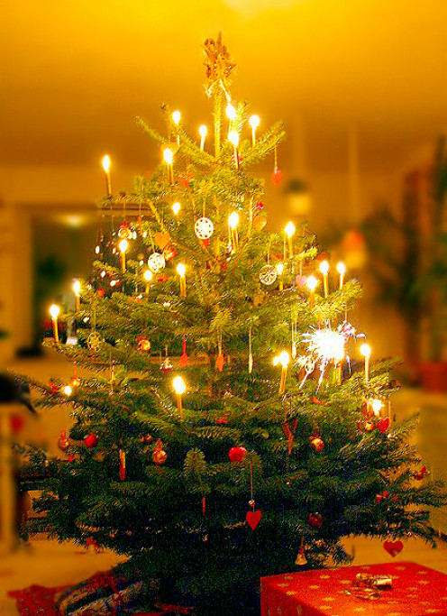 The Christmas is a festival of love, light, joy and peace