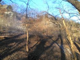 Castlewood Bluffs