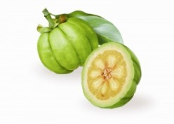Garcinia Cambogia Fruit Benefits