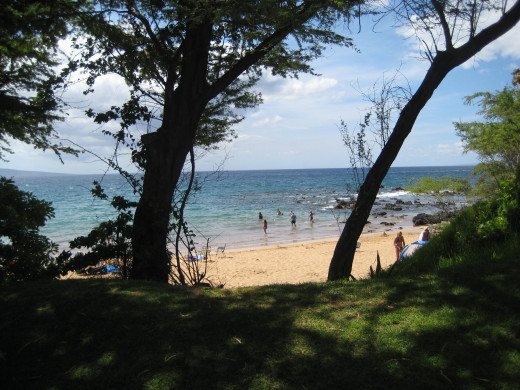 Ulua Beach, Kihei, Maui - excellent shorediving and a colorfully rich marine environment.