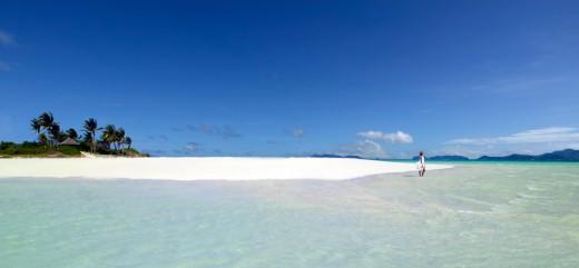 The Island Paradise