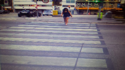 Vienna Cross Walks