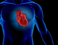 What Is Coronary Heart Disease and Can You Protect Yourself?